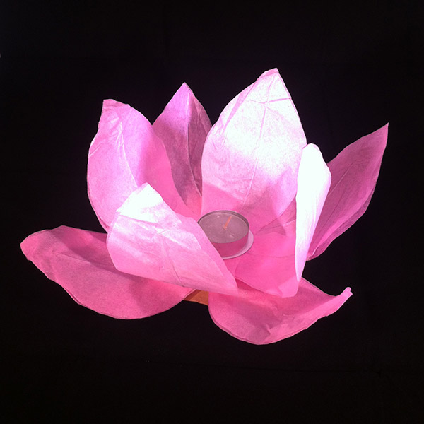 Floating Lotus Water Lanterns Pink